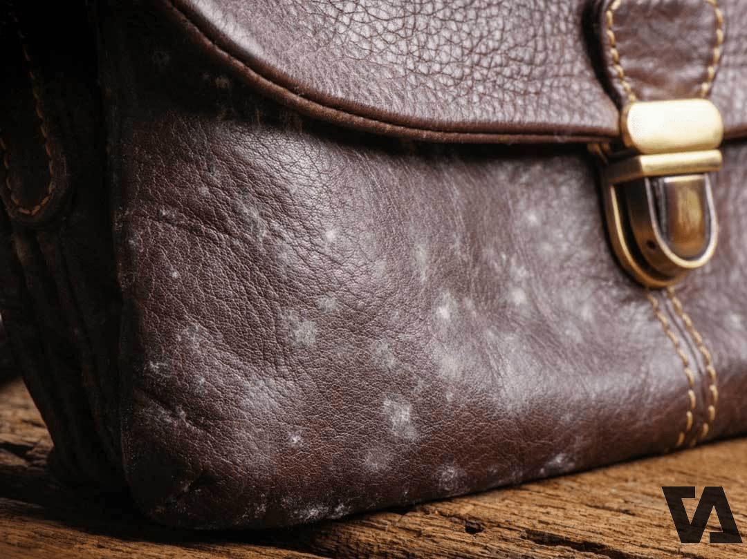 Vết mốc trên túi da dễ bị lan rộng nếu không xử lý kịp thời