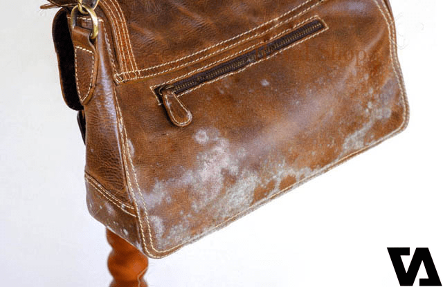 Một chiếc túi da có dấu hiệu bị mốc cần được xử lý ngay lập tức